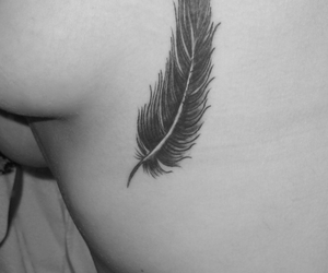 feather, feather tattoo, and tattoo image