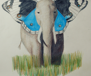 animal, blue, and pencil image