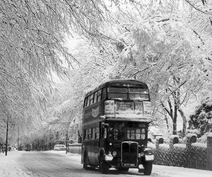 bus, england, and cold image