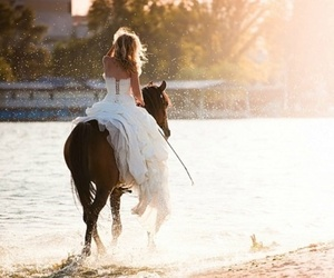bride, horse, and photography image