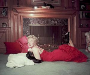 cinema and Marilyn Monroe image