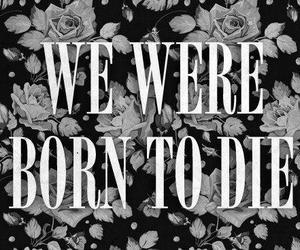 lana del rey, born to die, and die image