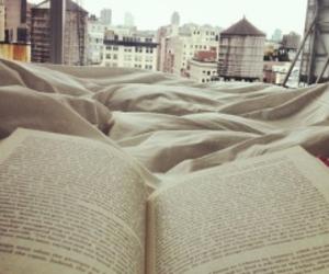 amo, livro, and book image
