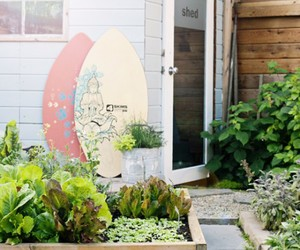 garden, house, and vege image