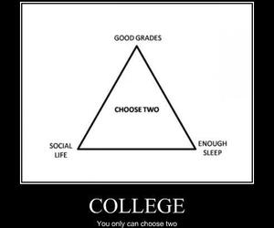 college, funny, and school image