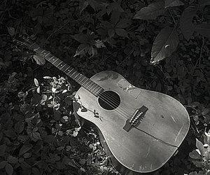 black and white, músicas, and instrumentos musicais image