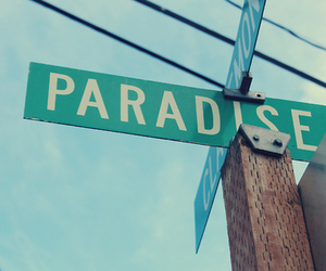 paradise, photography, and pretty image