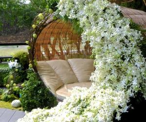 flowers, garden, and white image