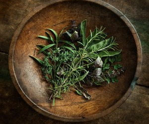 herbs and magic image