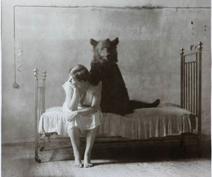 bear, bed, and vintage image