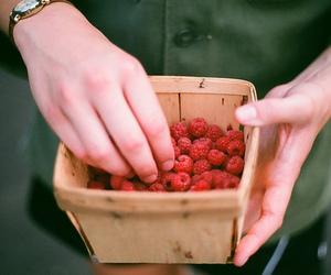 raspberry, food, and hands image