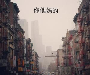asia, china town, and kawasaki image