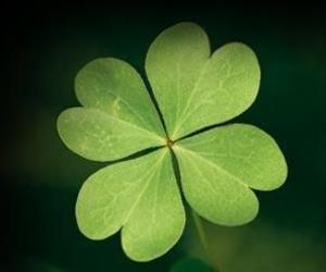 green and trebol image