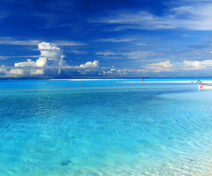 beach, water, and blue image