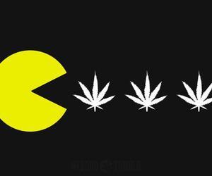 marijuana, weed, and drugs image