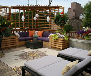 orange, purple, and patio image