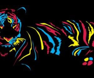 tiger, neon, and animal image