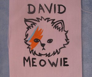 cat and david bowie image