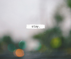 stay, text, and lol image