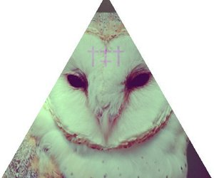 owl, cross, and triangle image