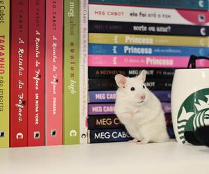 books and mug image
