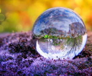 crystal ball, orange, and photography image