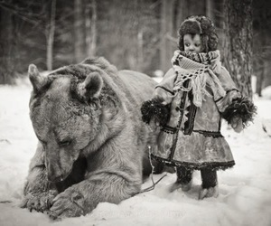 bear, snow, and russia image