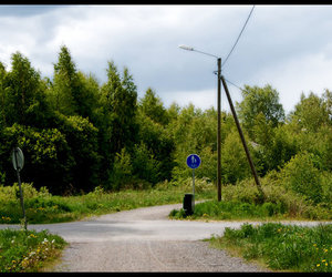 finland, green, and nature image
