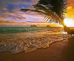 beach, sea, and hawaii image