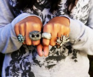 rings, owl, and accessories image