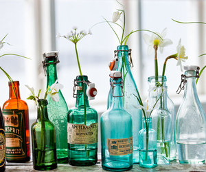 bottle and flowers image
