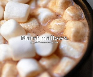 marshmallows and a girl's reasons to live image