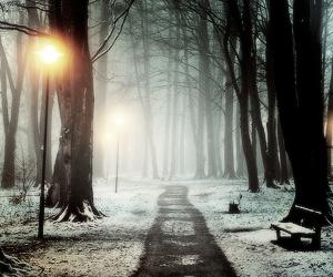 beautiful, photo, and snow image