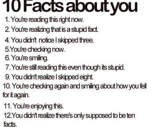 funny, facts, and lol image