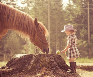 horse, girl, and cute image