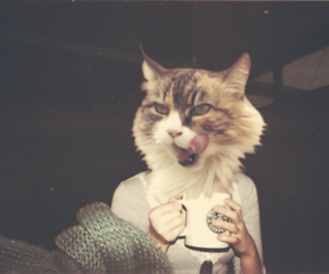girl, cat, and hipster image