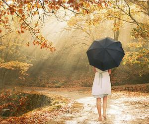 girl, umbrella, and autumn image