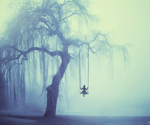 tree, alone, and swing image