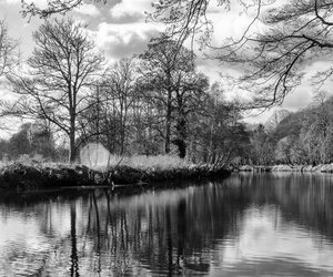 cardiff and bute park image