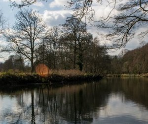 cardiff, bute park, and river image