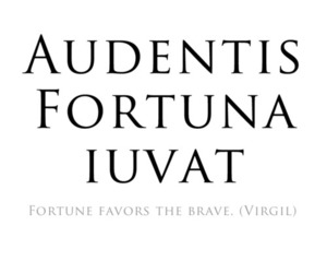 quote, brave, and latin image