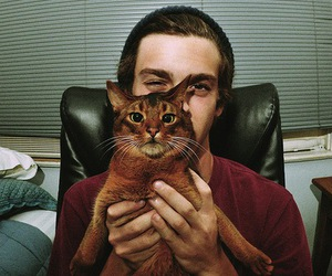boy, cat, and cute image