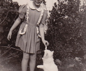 cat, photograph, and vintage image