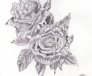 draw, flowers, and pencil image