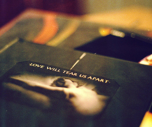 love, joy division, and love will tear us apart image