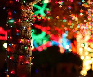 christmas, light, and photography image