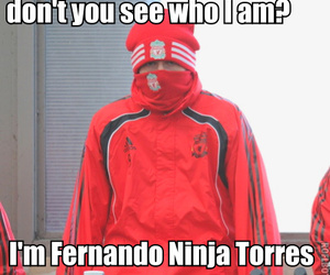 cold, fernando torres, and ninja image