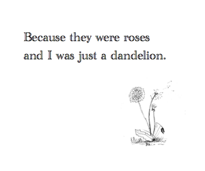 quotes, rose, and dandelion image