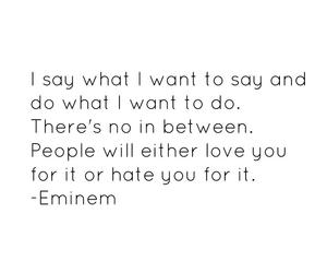 eminem, quote, and haters gonna hate image