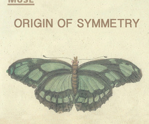 awesome, butterfly, and Origin image
